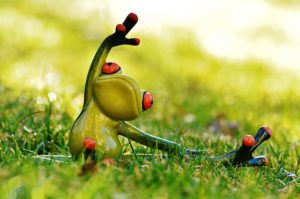 Grenouille qui pratique le yoga